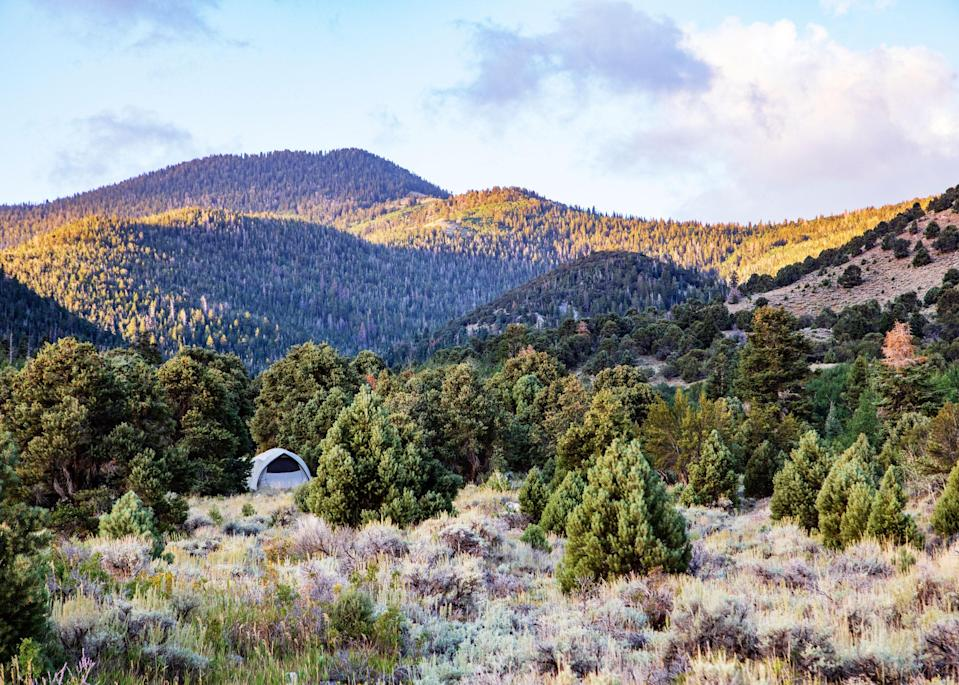 """<p><strong>Best camping in Nevada:</strong> Wheeler Peak Campground, Great Basin National Park</p> <p>Just a few miles south of the """"loneliest road in America,"""" Route 50, lies <a href=""""https://www.cntraveler.com/activities/baker/great-basin-national-park?mbid=synd_yahoo_rss"""" rel=""""nofollow noopener"""" target=""""_blank"""" data-ylk=""""slk:Great Basin"""" class=""""link rapid-noclick-resp"""">Great Basin</a>, one of the true hidden gems of the National Park System. Of the park's five developed campgrounds, Wheeler Peak is the most scenic, with commanding views of its namesake mountain. A short hike along the Bristlecone Trail brings travelers face to face with some of the oldest trees on the planet.</p>"""