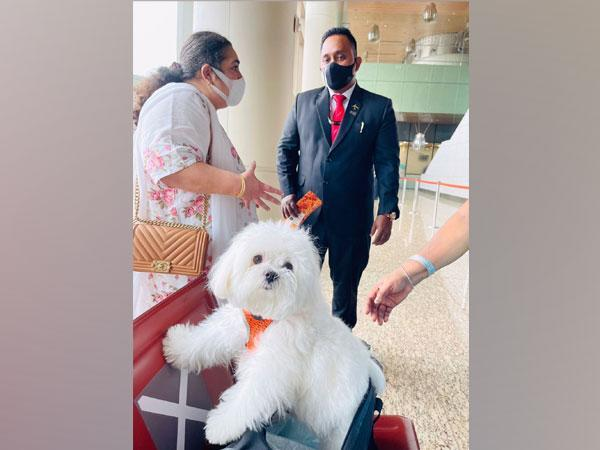 Pet owner and her dog who booked Air India's entire business class (Photo/ANI)
