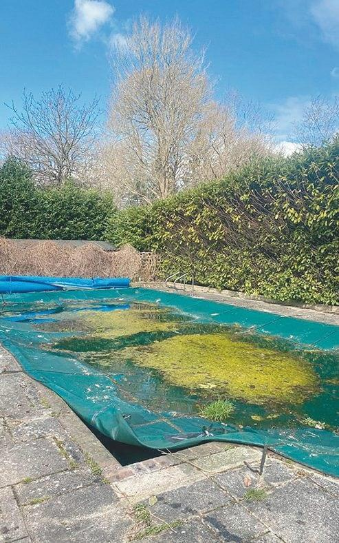 The pool before the redesign - Luke White