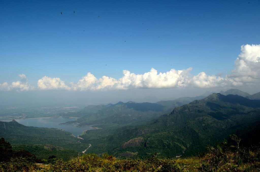<p><strong>High on Hills: Kudrevatti</strong> <br />Confession: I had not heard of Kudrevatti until a year ago. And this despite it being part of the landscape of the Western Ghats and barely an hour from my native village in Tirunelveli district of Tamil Nadu. I discovered it while I was on a long journey up the hills that took me through evergreen forests along the Kalakad Mundanthurai Tiger Reserve. I fell in love with it instantly. Low-hanging clouds, grasslands, a canopy of forests, and a viewpoint which shows you three beautiful dams. Kudrevatti defines romance.</p>