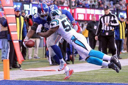 Dec 20, 2015; East Rutherford, NJ, USA; New York Giants tight end Will Tye (45) scores a touchdown against Carolina Panthers linebacker Thomas Davis (58) during the third quarter at MetLife Stadium. Mandatory Credit: Brad Penner-USA TODAY Sports