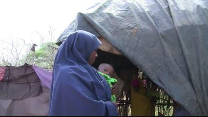 <p>Having fled drought and civil war in their native Somalia, life for Kenya's Dadaab camp refugees is as precarious as ever.</p>