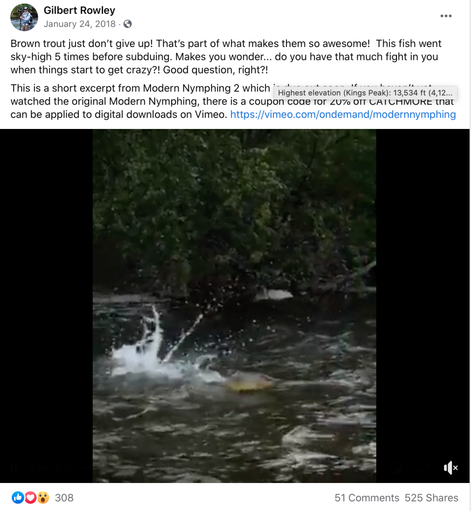 The video was uploaded on Facebook in 2018 by Gilbert Rowley.