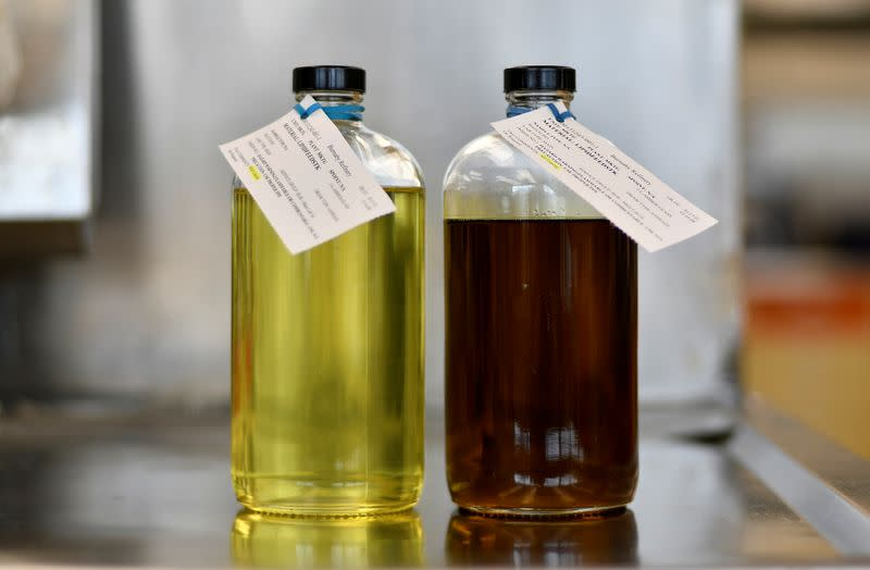 Canola oil at the Parkland Fuel laboratory in Burnaby