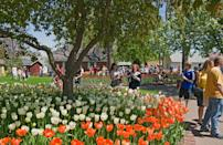 """<p>Pella has been called """"America's Dutch Treasure,"""" and was heavily influenced by the Dutch immigrants who settled there in 1847. There's so much Dutch culture to explore there, like <a href=""""http://molengracht.com/our-story/"""" rel=""""nofollow noopener"""" target=""""_blank"""" data-ylk=""""slk:Molengracht Plaza"""" class=""""link rapid-noclick-resp"""">Molengracht Plaza</a>, which features a Dutch-style canal. The city also features charming shops, the tallest working grain windmill in the U.S., and Tulip Time, an annual spring festival. </p>"""