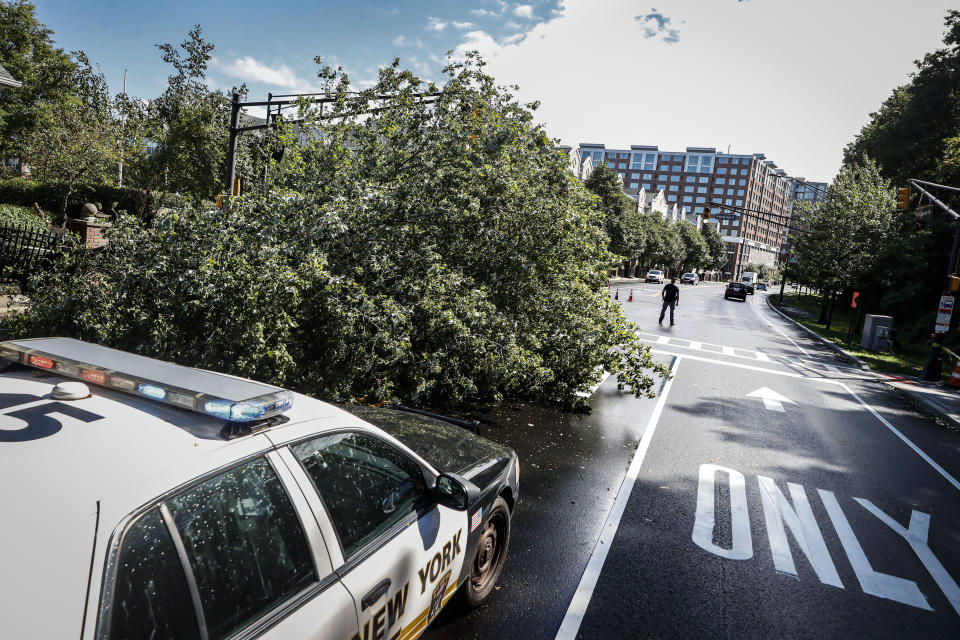 Police officers direct traffic around a fallen tree brought down by heavy rains and wind, Tuesday, Aug. 4, 2020, in West New York, N.J. Tropical Storm Isaias spawned tornadoes and dumped rain during an inland march up the U.S. East Coast, including New Jersey, on Tuesday after making landfall as a hurricane along the North Carolina coast. (AP Photo/John Minchillo)