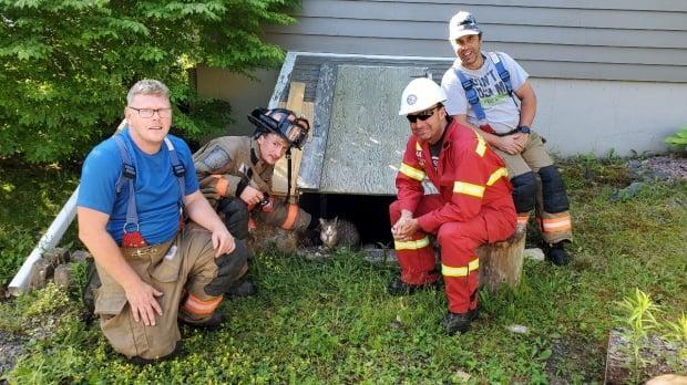 Members of the Lunenburg and District Fire Department pose with Ruby, the cat they helped coax down from a tree in Spectacle Lakes, N.S. on Sunday morning. (Matthew Rockwell - image credit)