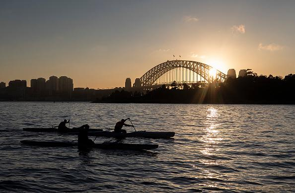Rowers are seen on Sydney Harbour at sunrise.