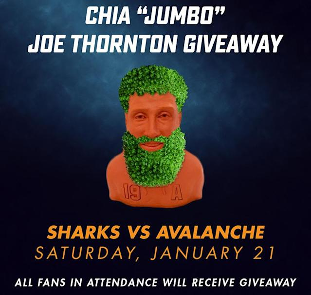 <em>Joe Thornton Chia Pet Night</em>