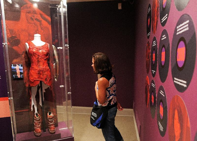 A visitor looks at the raw meat dress worn by Lady Gaga during an exhibition at the National Museum of Women in the Arts in Washington, DC on September 7, 2012 (AFP Photo/Jewel Samad)
