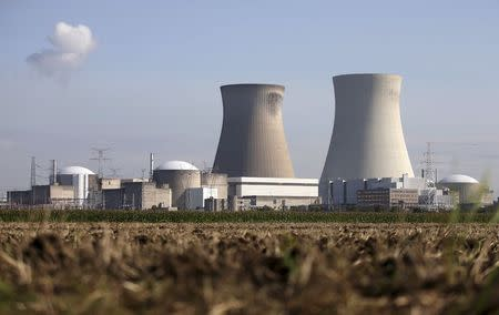 The Doel nuclear plant is pictured in northern Belgium August 20, 2014. REUTERS/Francois Lenoir