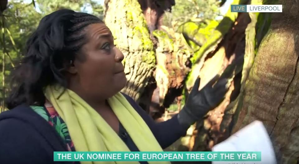 Alison Hammond interviewing a tree on This Morning (Photo: ITV)