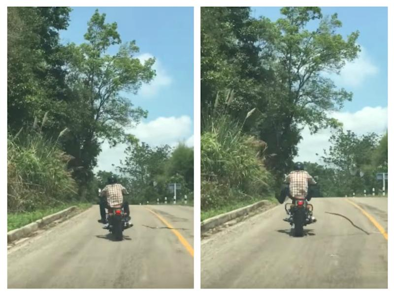 This snake tried to bite a motorcyclist in Thailand, and the footage is terrifying