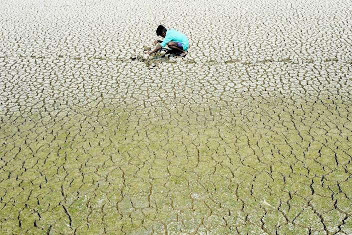 Vast swathes of India have been sweltering in extreme temperatures with the delayed onset of the monsoon rains adding to farmers' misery (AFP Photo/ARUN SANKAR)