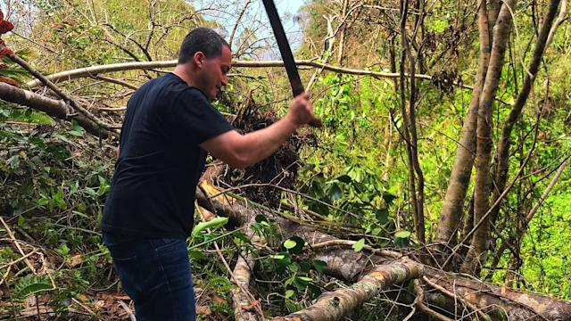 <p>Oscar Vazquez uses a machete to cut fallen branches from trees knocked over by Hurricane Maria at his family's farm in Hatillo, Puerto Rico. (Photo: Caitlin Dickson/Yahoo News) </p>