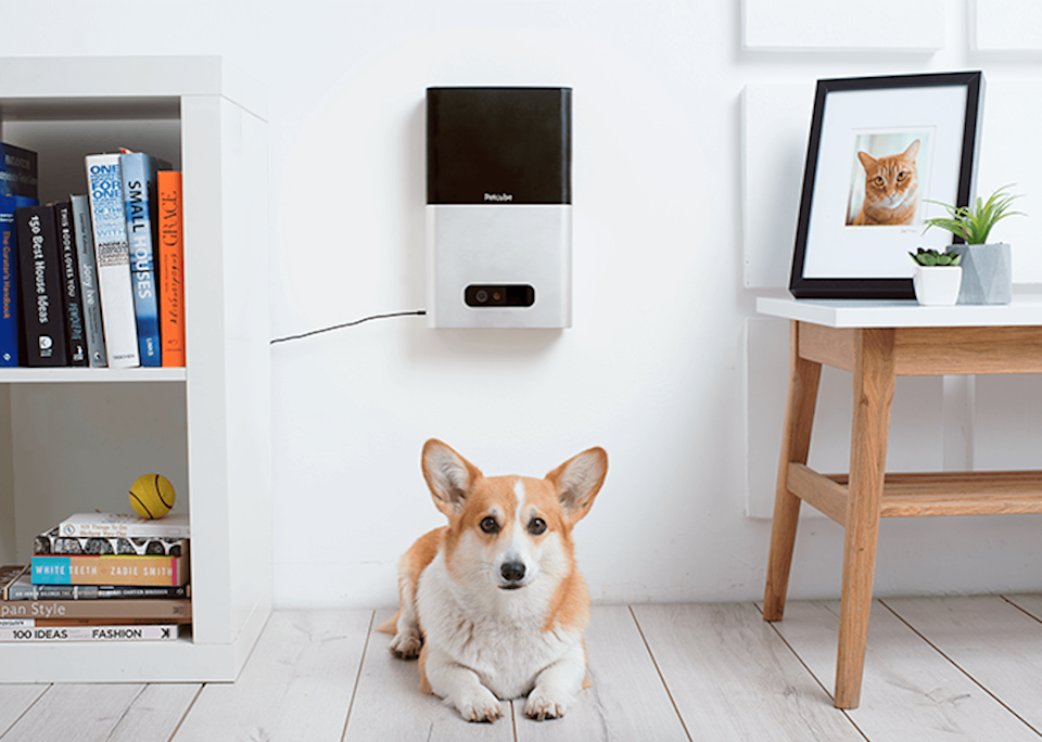 Thanks to the two newest camera products from Petcube, animal lovers can put their guilt and anxiety aside, and stay connected by way of the Petcube Bites and Petcube Play. They have both launched on Kickstarter at a pre-order price.