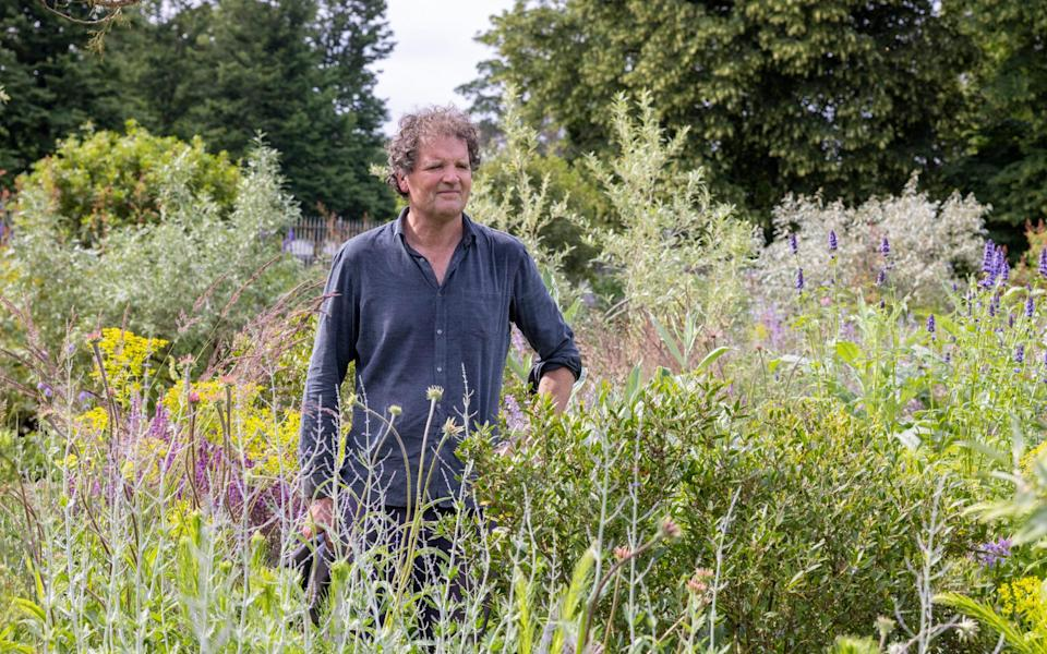 Tom Stuart Smith, who is the show's Iconic Horticultural Hero, has designed a perennial meadow featuring Mediterranean shrubs - Heathcliff O'Malley