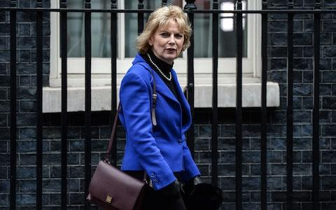 anna soubry - Credit: Getty