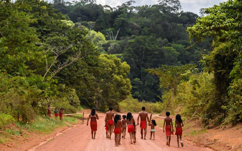 Brazilian Waiapi walk through an indigenous reserve in Amapa state in 2017. Brazil's tribal peoples have long faced pressure from miners, ranchers and loggers.  - AFP