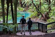 <p>At the Tree Walk, they headed over to a beautiful reservoir area to soak in the views.</p>