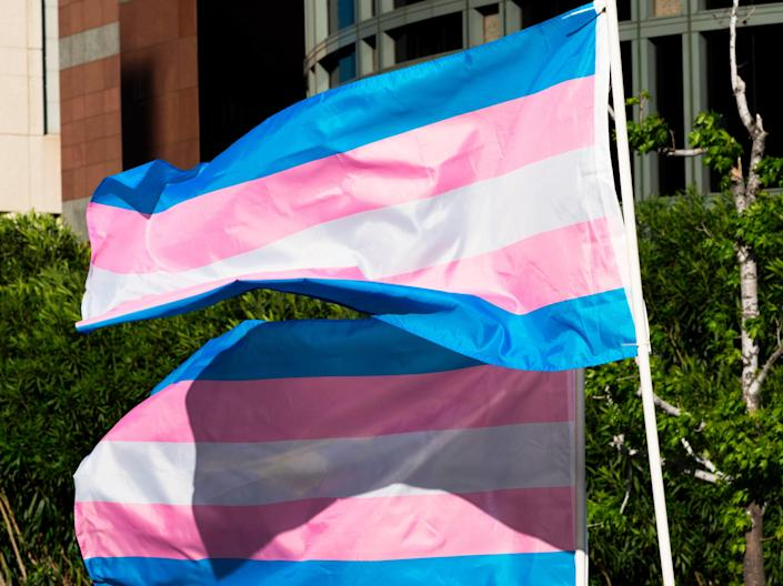 <p>Trans pride flags flutter in the wind at a gathering to celebrate International Transgender Day of Visibility, 31 March, 2017 at the Edward R Roybal Federal Building in Los Angeles, California </p> (AFP via Getty Images)