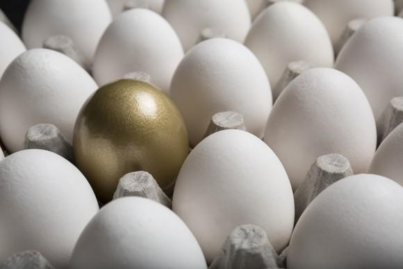 One golden egg in a tray of white eggs.