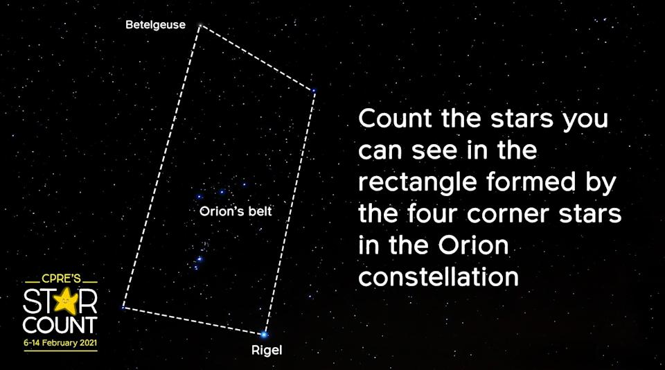 The area of the night sky that the citizen science survey focuses on (CPRE/PA)