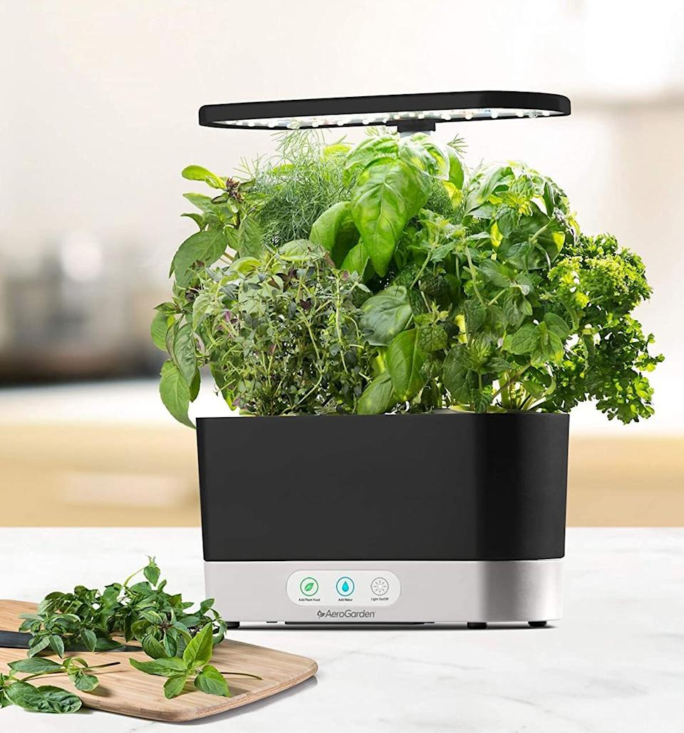 "For gardeners who are embarrassingly bad at keeping their plants alive. Good thing this hydroponic system alerts you when it's time to water and feed your plants.<br /><br /><strong>Promising review:</strong> ""I purchased this as a Christmas gift for my boyfriend's sister-in-law who lamented not having a green thumb. I was somewhat apprehensive, having read a few reviews that mentioned pods not spouting. However, in the two months that the sis-in-law has had the AeroGarden, the growth has been tremendous. <strong>I'm constantly in awe when she sends me pics of the new growth.</strong> Only one pod failed to spout, but she reached out to customer service, and they are sending a replacement for that particular pod. All the others have grown quite large, and last night I received a picture of their dinner using herbs grown with the AeroGarden. Impressive!"" — <a href=""https://amzn.to/3naMABB"" target=""_blank"" rel=""noopener noreferrer"">Mary A. Walls</a><br /><br /><strong>Get it from Amazon for <a href=""https://amzn.to/3naMABB"" target=""_blank"" rel=""noopener noreferrer"">$89.99+</a> (available in three colors).</strong>"