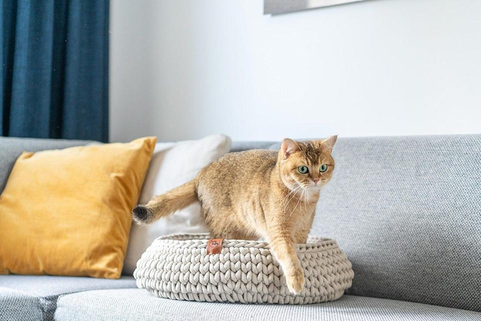 """<p>Let's be honest: For as important as it is to provide our favorite felines <a href=""""https://www.marthastewart.com/1531482/cat-window-perch"""" rel=""""nofollow noopener"""" target=""""_blank"""" data-ylk=""""slk:a comfy place to sleep"""" class=""""link rapid-noclick-resp"""">a comfy place to sleep</a>, most cat beds aren't very fun to look at. """"Aesthetically speaking, cat beds should be designed to fit into the modern home,"""" says Damian Hall, senior marketing manager at <a href=""""https://usa.catit.com/"""" rel=""""nofollow noopener"""" target=""""_blank"""" data-ylk=""""slk:Catit"""" class=""""link rapid-noclick-resp"""">Catit</a>. """"These days, pet parents are looking for cat furniture <a href=""""https://www.marthastewart.com/2125211/pet-furniture-ideas"""" rel=""""nofollow noopener"""" target=""""_blank"""" data-ylk=""""slk:with a sleek design that looks similar to human furniture"""" class=""""link rapid-noclick-resp"""">with a sleek design that looks similar to human furniture</a> and doesn't stick out like a sore thumb.""""</p> <p>Along with being stylish, it's essential to find a cat bed that <a href=""""https://www.marthastewart.com/2124673/pet-sleeping-habits-explained"""" rel=""""nofollow noopener"""" target=""""_blank"""" data-ylk=""""slk:allows your pet to relax"""" class=""""link rapid-noclick-resp"""">allows your pet to relax</a> enough to fall asleep. """"Cats often feel safest <a href=""""https://www.marthastewart.com/7795275/why-cats-like-boxes"""" rel=""""nofollow noopener"""" target=""""_blank"""" data-ylk=""""slk:when sleeping in an enclosed cubby-like space"""" class=""""link rapid-noclick-resp"""">when sleeping in an enclosed cubby-like space</a> where they feel both comfortable and safe,"""" Hall explains. """"Overall, well-designed cat furniture <a href=""""https://www.marthastewart.com/1542122/cat-shelves-guide"""" rel=""""nofollow noopener"""" target=""""_blank"""" data-ylk=""""slk:meets cats' instinctual needs"""" class=""""link rapid-noclick-resp"""">meets cats' instinctual needs</a>, but does not come at the expense of your personal design aesthetic.""""</p> <p>However, with all the contemporary cat beds on the market, s"""