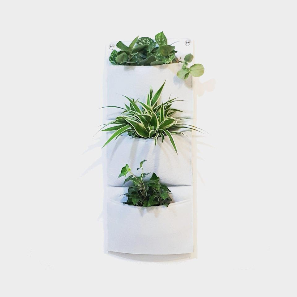 """<p><strong>FloridejaGreenUp</strong></p><p>etsy.com</p><p><strong>$50.20</strong></p><p><a href=""""https://go.redirectingat.com?id=74968X1596630&url=https%3A%2F%2Fwww.etsy.com%2Flisting%2F637196970%2Fwall-planter-indoor-living-wall-planter&sref=https%3A%2F%2Fwww.housebeautiful.com%2Flifestyle%2Fgardening%2Fg1877%2Findoor-herb-gardens%2F"""" rel=""""nofollow noopener"""" target=""""_blank"""" data-ylk=""""slk:BUY NOW"""" class=""""link rapid-noclick-resp"""">BUY NOW</a></p><p>For something a little more low-key, this planter, which features three pockets for growing different plants, hangs on your wall to keep your counters clear.</p>"""