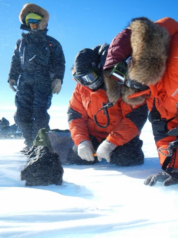 The fifth largest meteorite ever found in East Antarctica was discovered Jan. 28 by an international team of meteorite hunters.