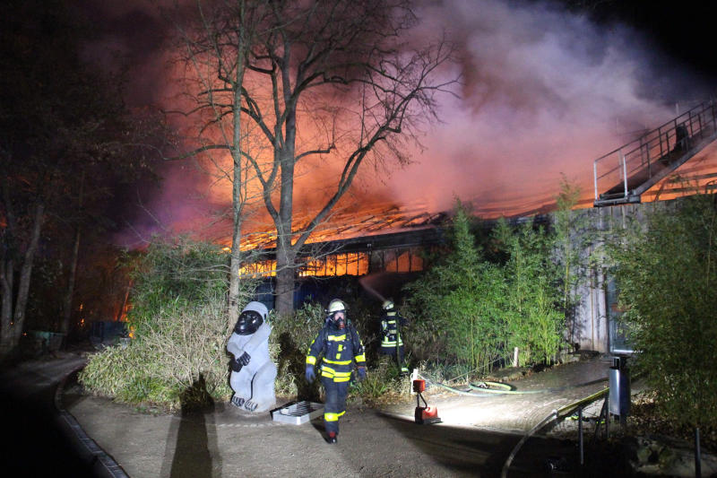 Firefighters stand in front of the burning monkey house at Krefeld Zoo, in Krefeld, Germnay, Wednesday Jan 1, 2020. A fire at a zoo in western Germany killed a large number of animals in the early hours of the new year, authorities said. (Alexander Forstreuter/dpa via AP)