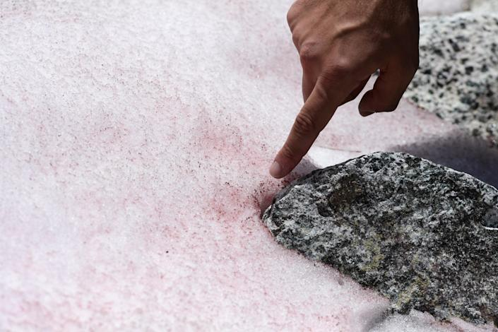 Biagio di Maio points to pink-coloured snow. (Miguel Medina/AFP via Getty Images)