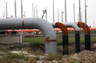 FILE PHOTO: Gas pipelines are seen in a gas distribution center near the Serbian border in Kiskundorozsma