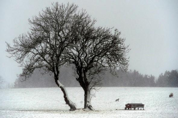 It's going to be a warm week - but snow is forecast for Friday