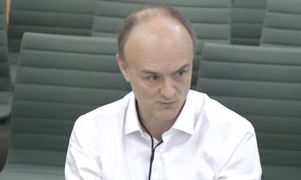 Dominic Cummings at the science and technology committee on Wednesday. (Parliamentlive.tv)