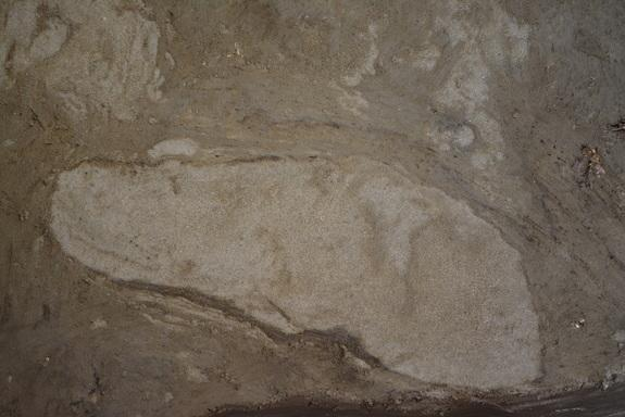 'Extraordinary' 5,000-Year-Old Human Footprints Discovered