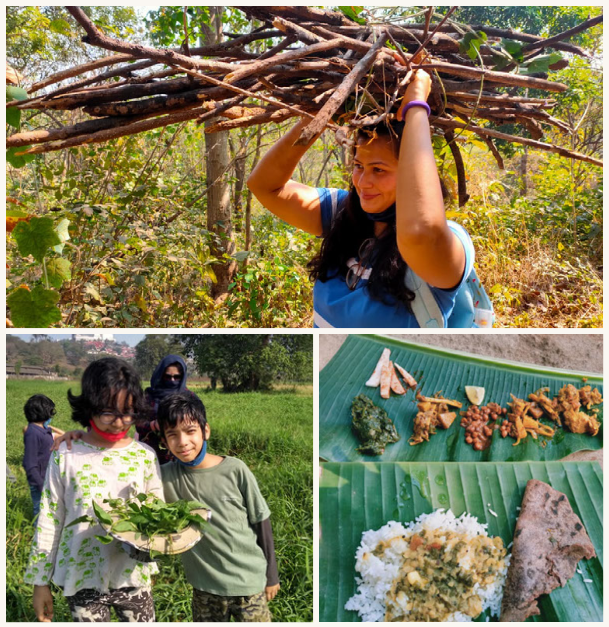 Snapshots from the Aarey Forest Foraging Walk