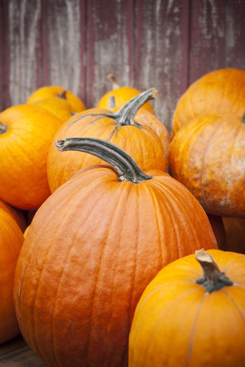 """<p>The first Halloween-like festivities in America predominantly arose in the southern colonies. People began to celebrate the harvest, swap ghost stories and even tell each other's fortunes. However, those early fall festivals were known as """"play parties"""" at the time. </p>"""
