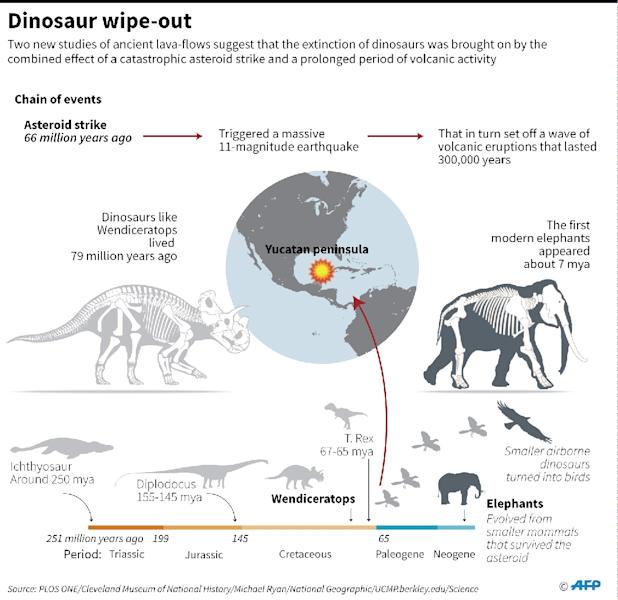 Graphic on the catastrophic events that wiped out large dinosaurs and many other species on the planet some 66 million years ago. (AFP Photo/Adrian LEUNG, John SAEKI)