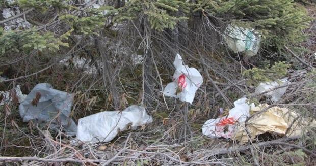 Regina will be joining more than 40 other Canadian municipalities in 2022 with a ban on plastic check-out bags.