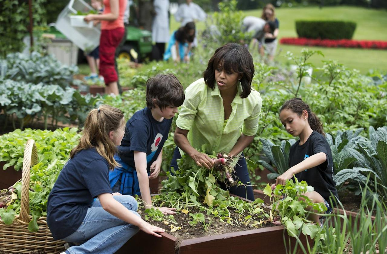 First lady Michelle Obama joins school children from Long Beach Island Grade School in Ship Bottom, N.J., left, and second from left, and Union Beach Memorial School in Union Beach, NJ, right, to harvest the summer crop from the White House kitchen garden, Tuesday, May 28, 2013, at the White House in Washington. (AP Photo/Manuel Balce Ceneta)