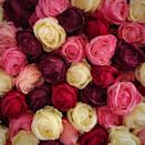 """<p>There's no one way to say """"I love you!"""" By mixing and matching the shades in your bouquet, you are combining the meaning that comes with each rose, creating an arrangement as unique as your love.</p><p><a class=""""link rapid-noclick-resp"""" href=""""https://flowercompany.ca/buy/bouquet/"""" rel=""""nofollow noopener"""" target=""""_blank"""" data-ylk=""""slk:SHOP CUSTOM BOUQUETS"""">SHOP CUSTOM BOUQUETS</a></p>"""