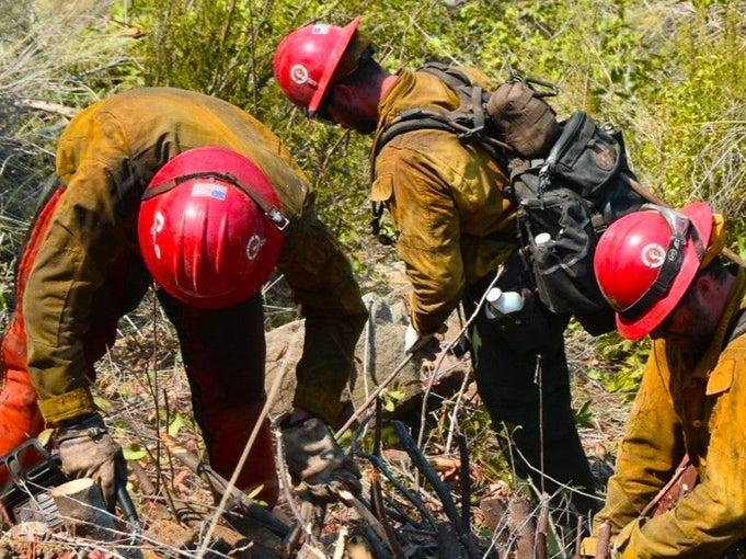 A group of firefighter monks clearing brush in California (California Interagency Willow Fire Incident)