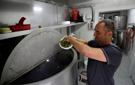 "Radek Spacil, co-owner of the ""Smart Brewery"", brews a beer in a portable brewery built in a standard shipping container, in Prague, Czech Republic, September 2, 2017. Picture taken September 2, 2017.   REUTERS/David W Cerny"