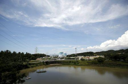 No.1 (L) and No.2 reactor buildings are pictured at Kyushu Electric Power's Sendai nuclear power station in Satsumasendai, Kagoshima prefecture, Japan, July 8, 2015.      REUTERS/Issei Kato/Files