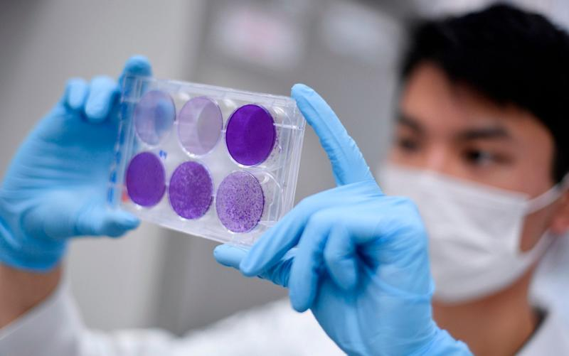 A researcher works on trials of a Chinese-made vaccine in Brazil - Douglas Magno/AFP