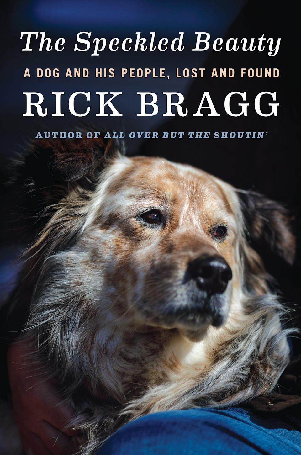 """""""The Speckled Beauty: A Dog and his People, Lost and Found,"""" by Rick Bragg."""
