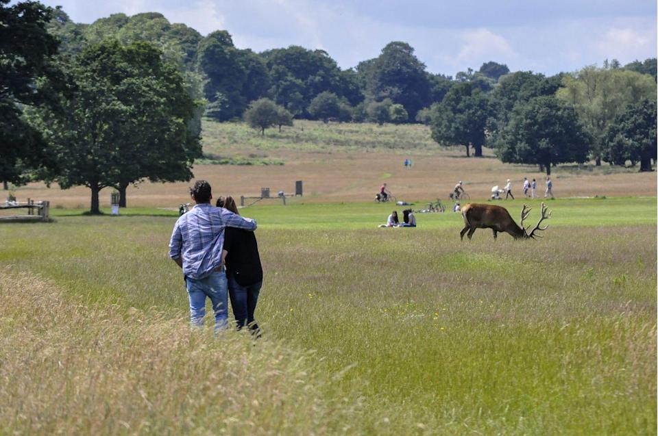 """<p>At a massive 2,500 acres, Richmond Park is one of London's biggest green spaces, and feels like a true escape from the hustle and bustle of the city. With wooded areas, streams, lakes, hills and hidden clearings, it's a real wilderness – in fact you might spot some of the park's famous deer leaping through the grass. </p><p>Make the most of an afternoon here by relaxing with a picnic and soaking up the fantastic scenery, including incredible views of London's skyline.</p><p>Enjoy a gourmet picnic for two in the park with <a href=""""https://www.redescapes.com/offers/london-richmond-hill-hotel"""" rel=""""nofollow noopener"""" target=""""_blank"""" data-ylk=""""slk:Richmond Hill Hotel's exclusive offer"""" class=""""link rapid-noclick-resp"""">Richmond Hill Hotel's exclusive offer</a>, just for Red readers.</p><p><a class=""""link rapid-noclick-resp"""" href=""""https://www.redescapes.com/offers/london-richmond-hill-hotel"""" rel=""""nofollow noopener"""" target=""""_blank"""" data-ylk=""""slk:FIND OUT MORE"""">FIND OUT MORE</a></p>"""
