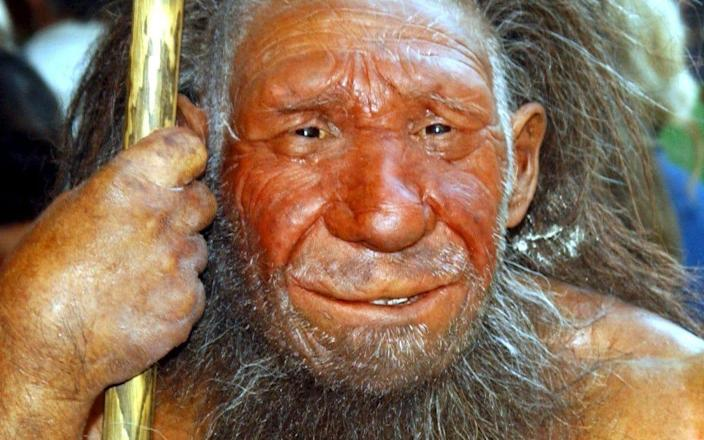 A recreation of a Neanderthal man at the Neanderthal Museum in Mettmann, Germany - EPA